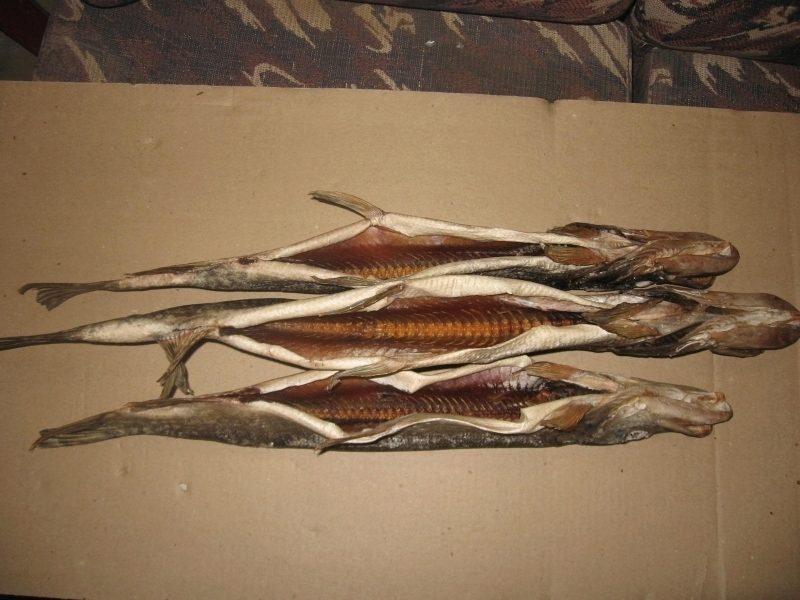 волжская рыба каталог с фото это вкуснейшее